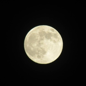 Super Moon taken July 23rd by Leilani May in Denver, CO. Thank you for letting me share, Leilani!