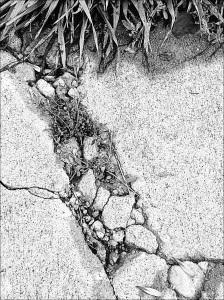 Cracked mosaic