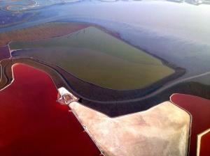 Salt Flats of San Francisco Bay: Photo by Noelle