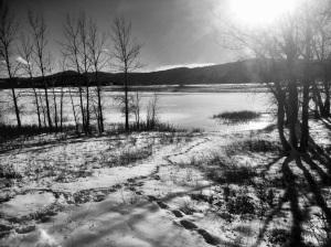 Lakeside: Photo by Noelle