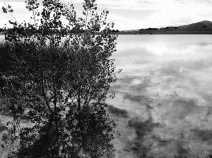 Hine Lake: Photo by Noelle