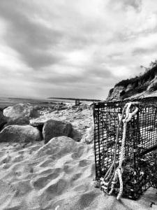 Mohegan's Bluff, Block Island: Photo by Noelle